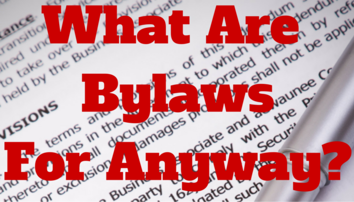 So What Are Bylaws For Anyway?